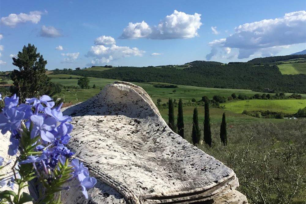 Veduta delle colline toscane con fiori in primo piano