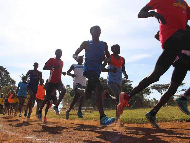 runners purosangue